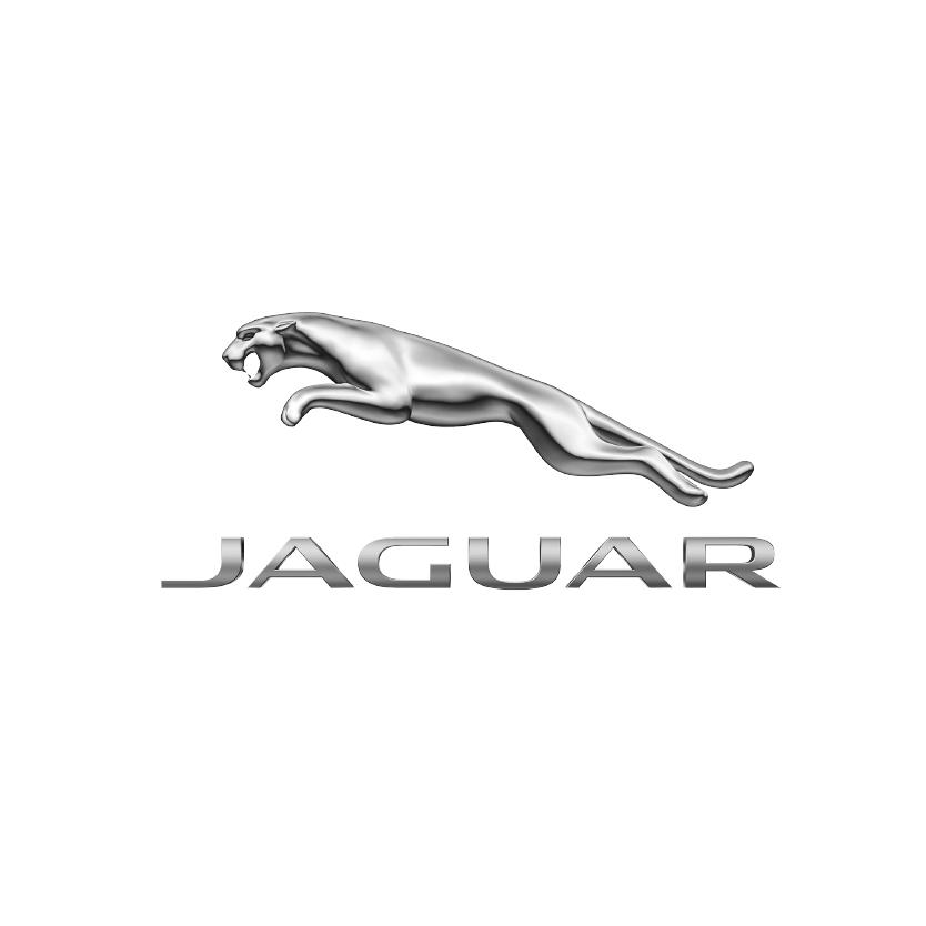 купить jaguar в минске