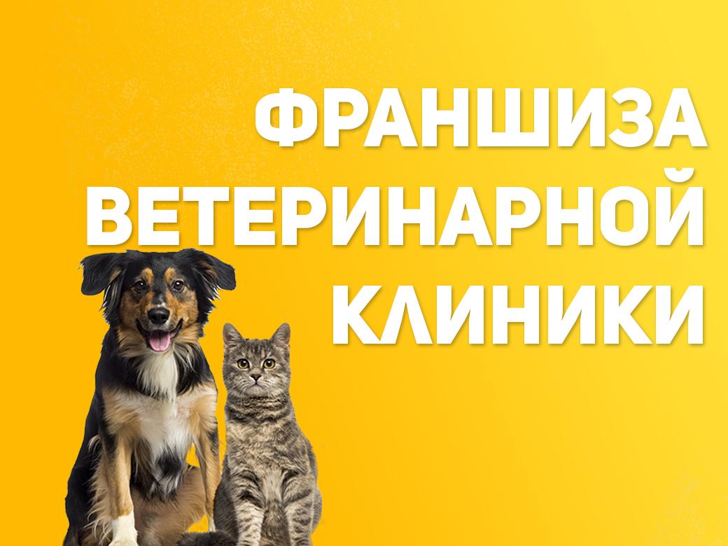 Франшиза ветеринарной клиники   Купить франшизу. ру