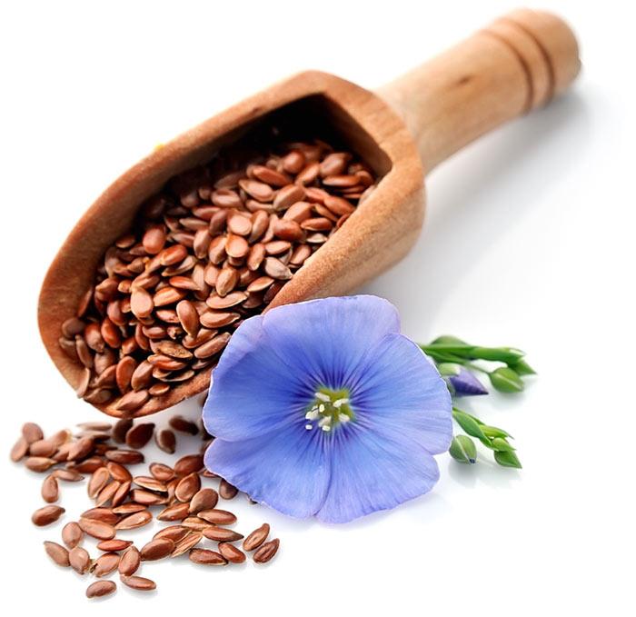 Лененото семе е с редица ползи за здравето и участва в приготвянето на различни хранителни продукти