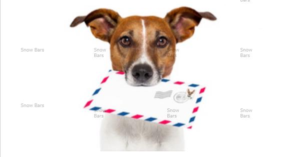 E-mail-маркетинг – это инструмент интернет-маркетинга, выстраивающий прямое общение между бизнесом и покупателем
