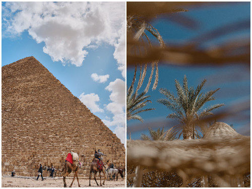 Каир и Шарм-эль-Шейх летом