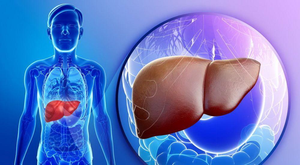 Чому не болить печінка та як не пропустити важливе