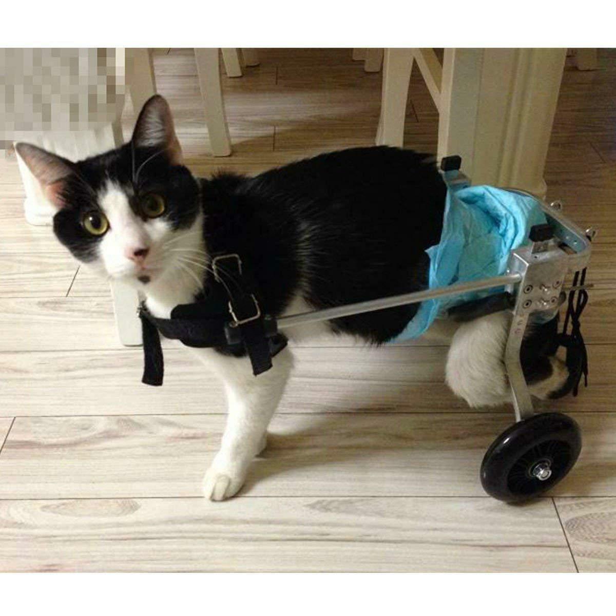 Инвалидные коляска для кошки с парализованными задними ногами