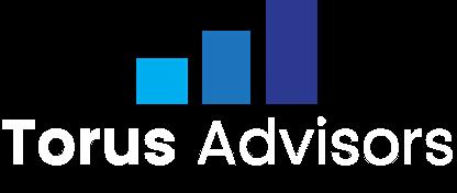 Torus Advisors