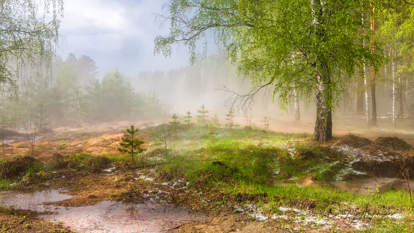 Russian nature. Photography workshops