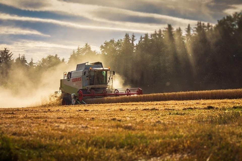 как получить грант на сельское хозяство