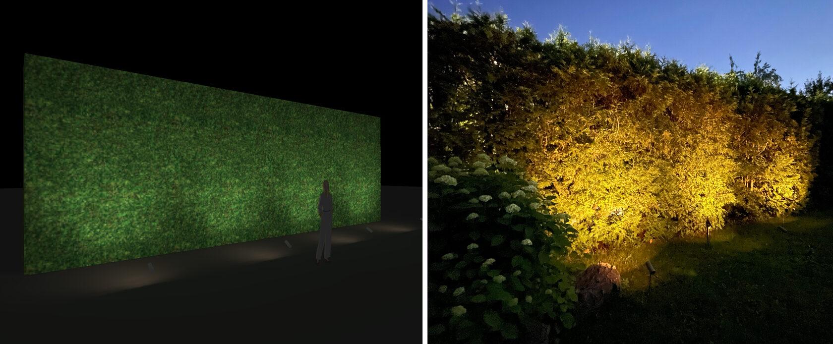 Концепция и реализация освещения живой изгороди