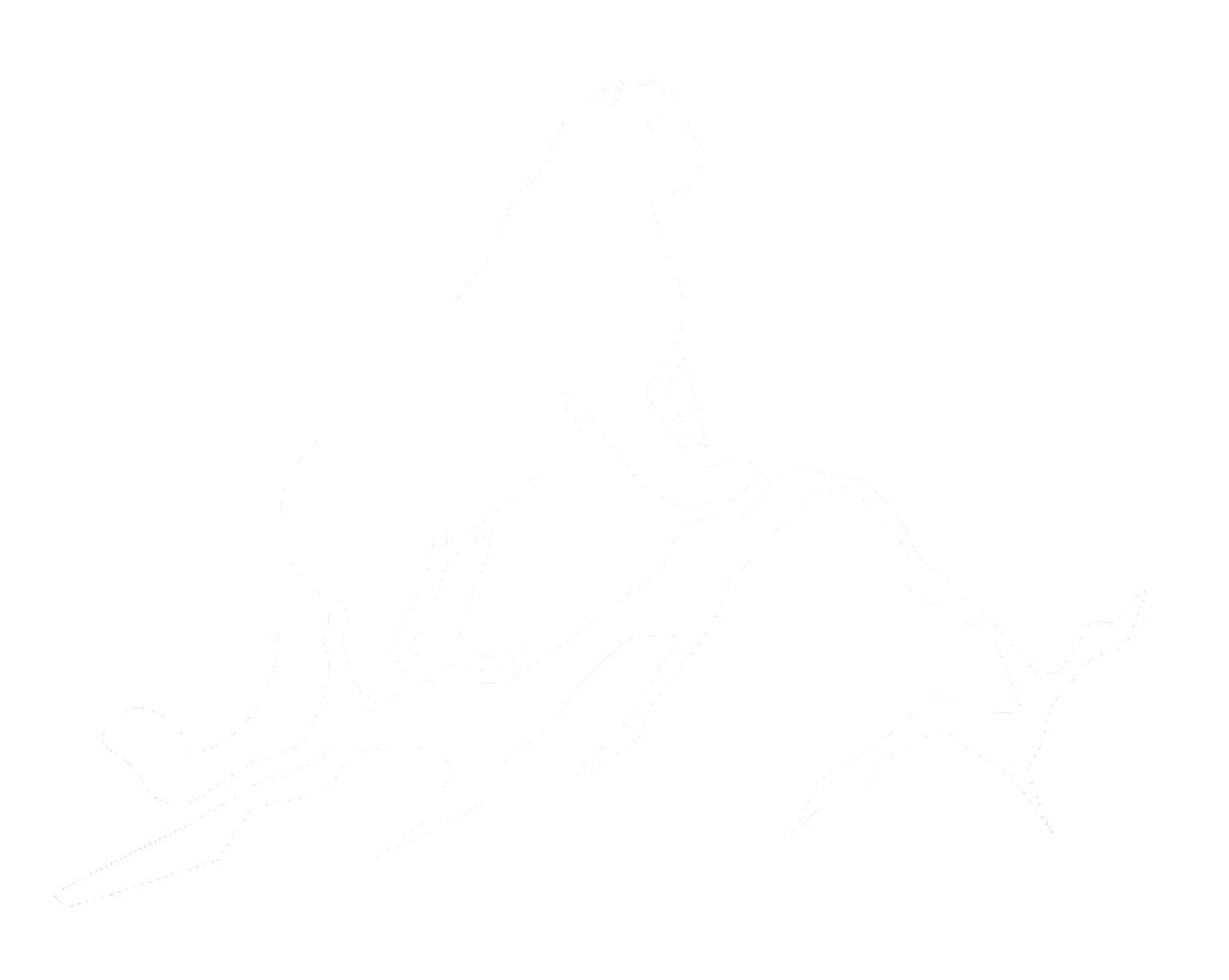 Уральский Барс