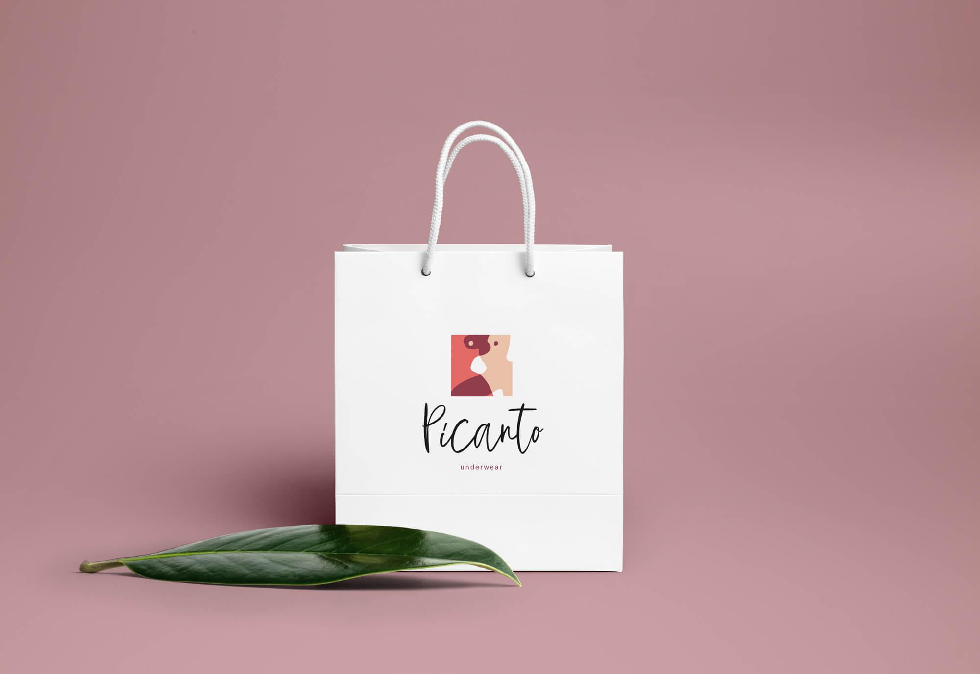 Фирменный стиль бренда Picanto - пакет