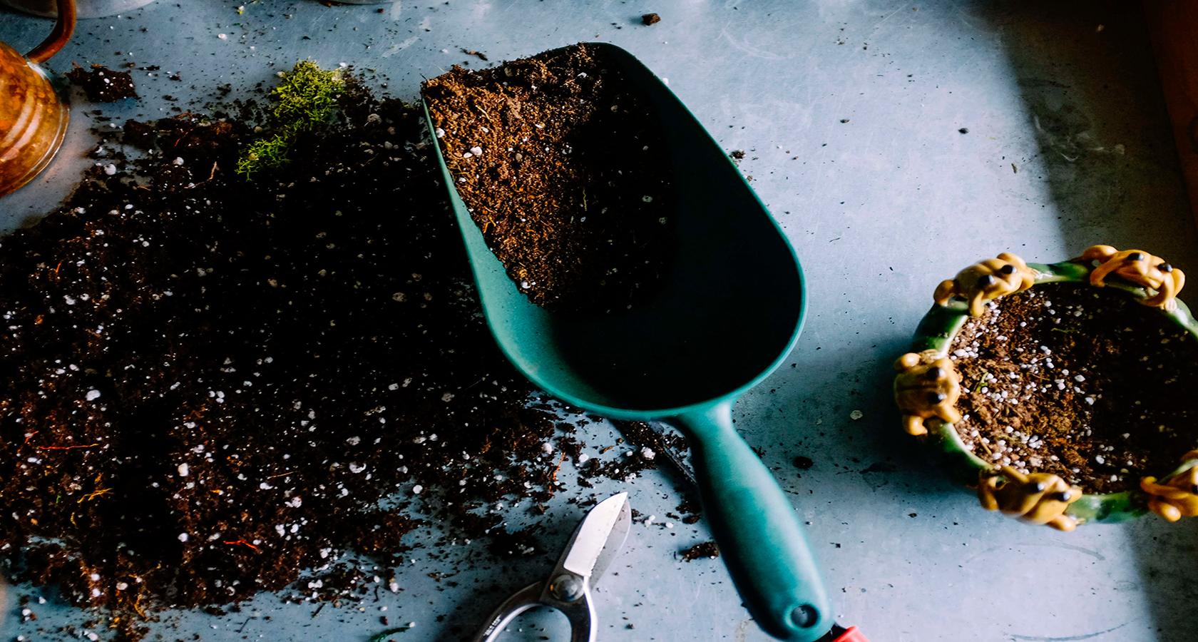 Лопатка с землей для суккулентов Laaroom