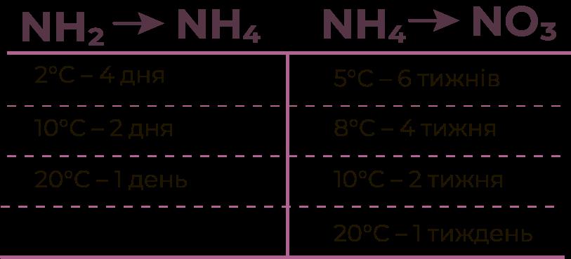 Поглинання рослинами азотних форм, Поглощение растениями азотных форм