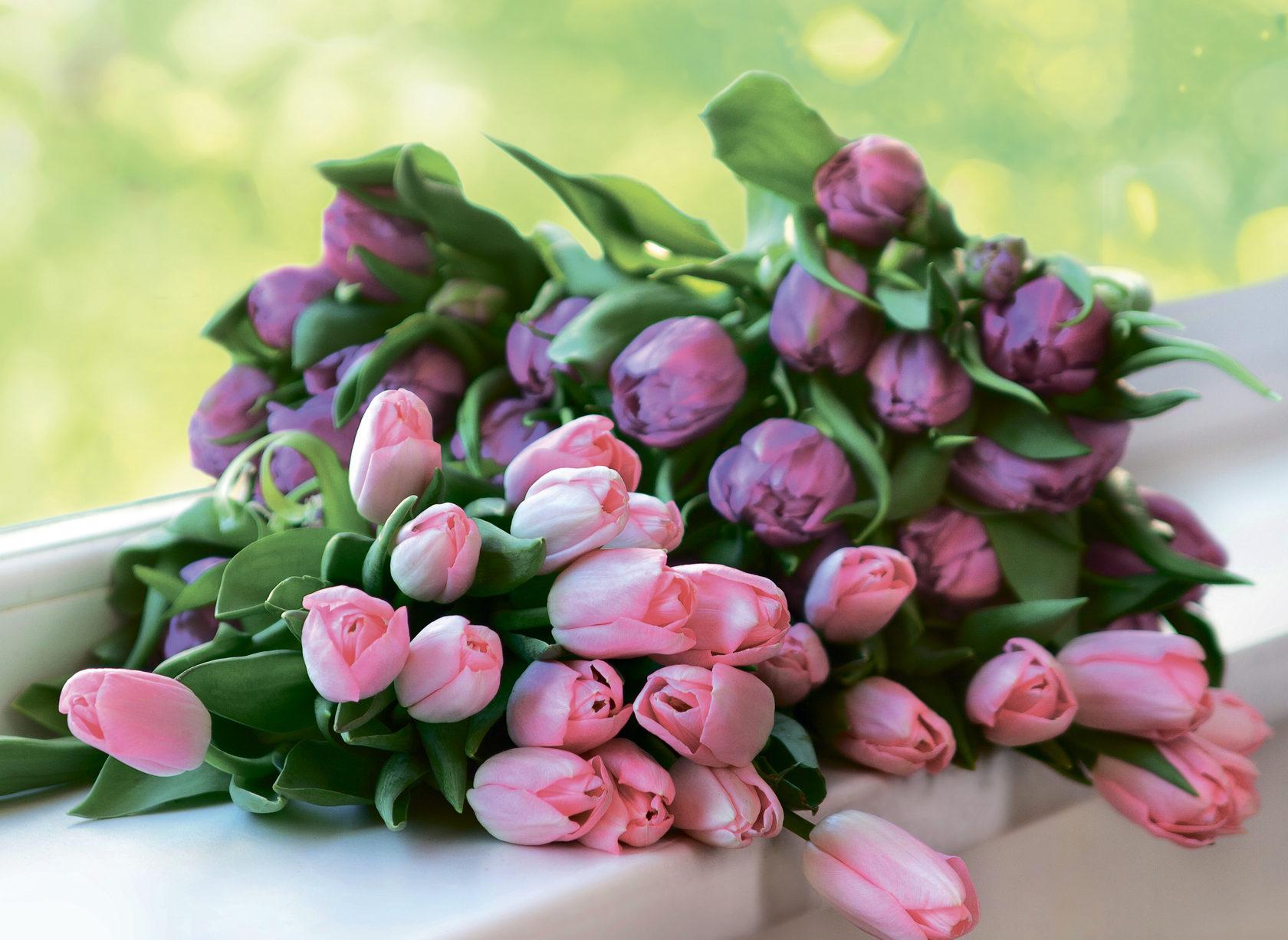 Невесты, 8 марта красивые букеты