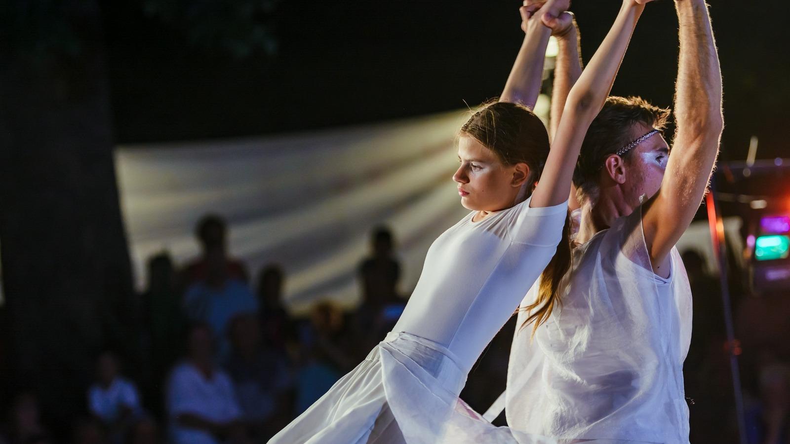 "Школа инклюзивного творчества ""Танцующий Дом"""