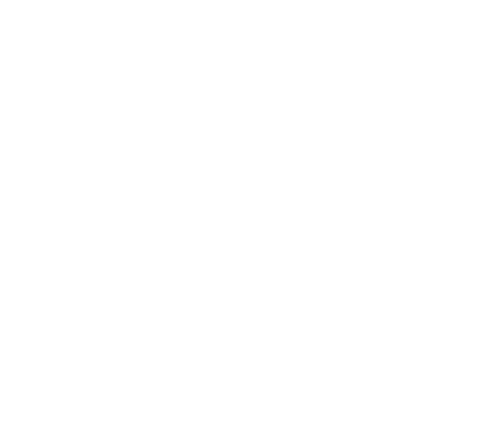 ARENA DESIGN MOSCOW