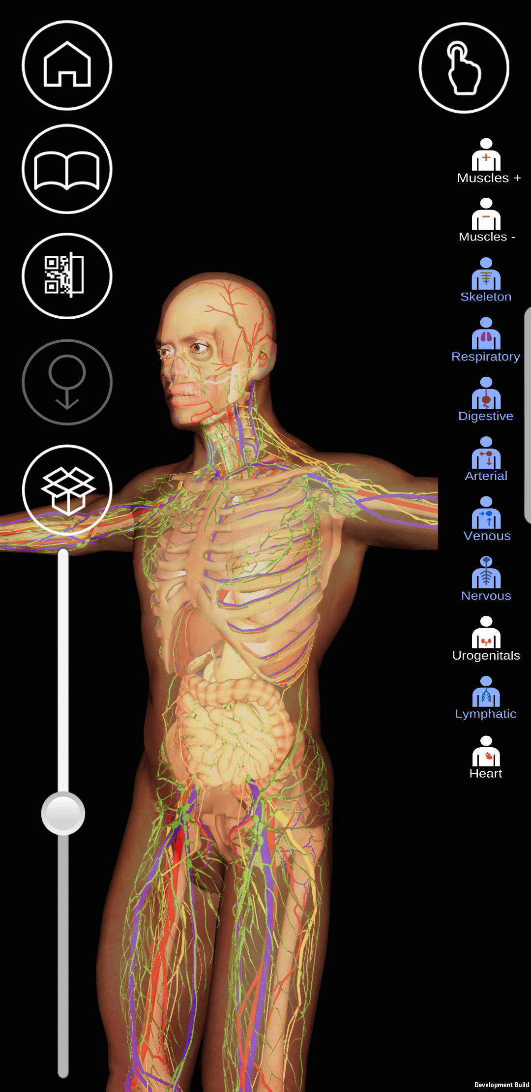 Anatomy 4d augmented reality