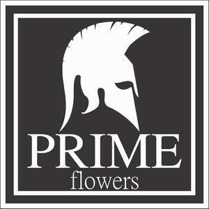 PRIME FLOWERS