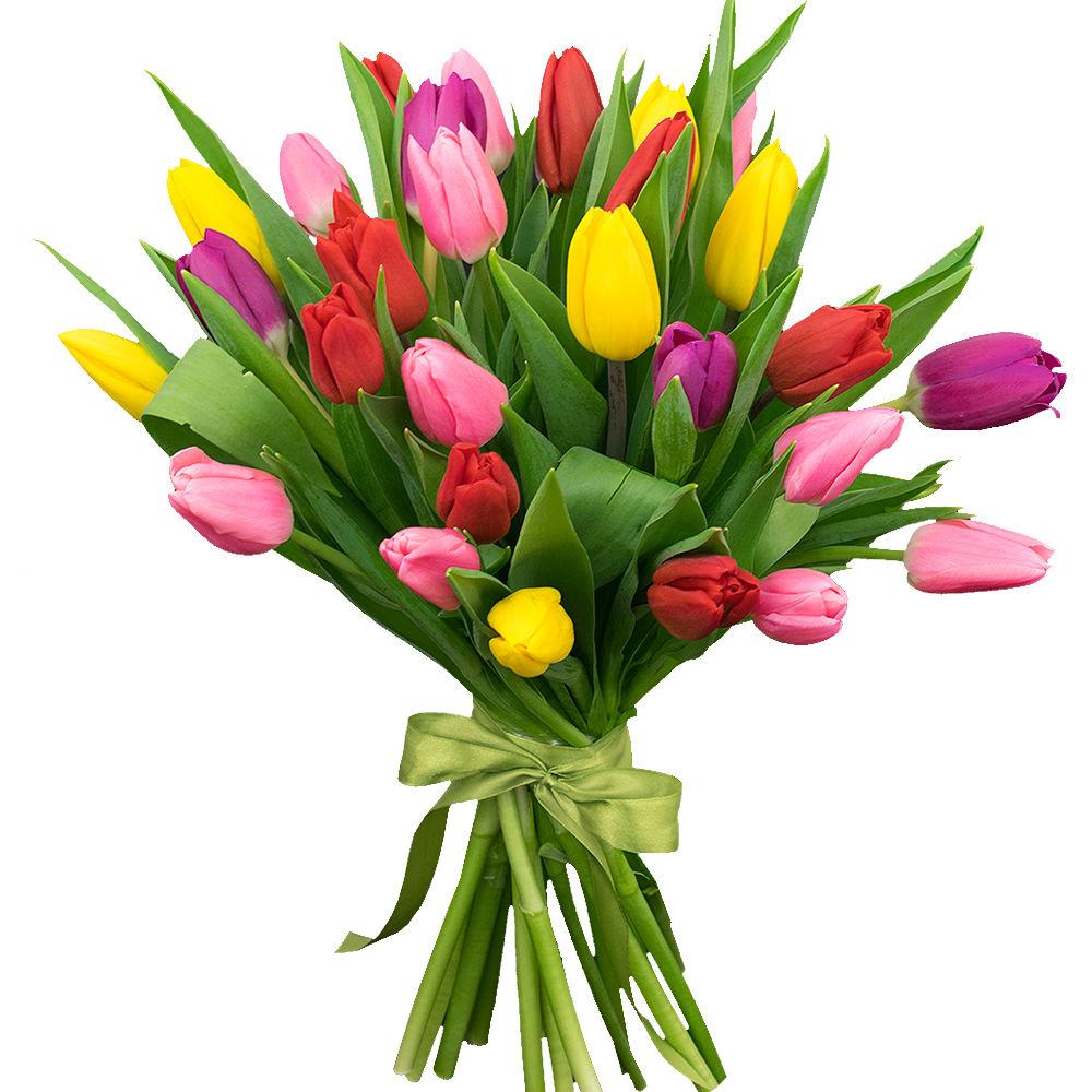 что маленькие картинки с тюльпанами только