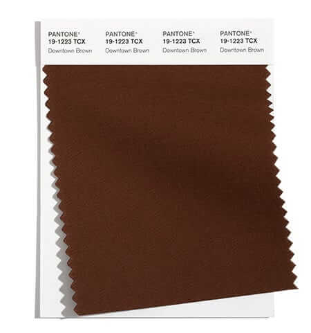 Модерен кафяв цвят Downtown Brown е сред 10 актуални цвята според Pantone за fall / winter 2021 / 2022.