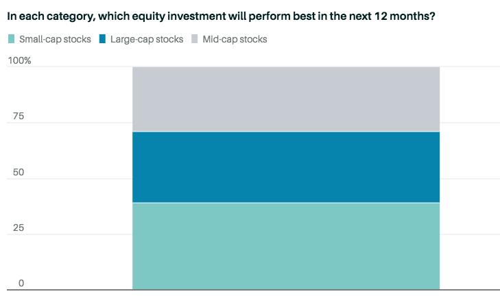 Распределение инвестиций по размеру капитализации компаний в следующие 12 месяцев