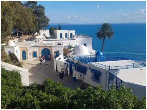 Тунис в августе