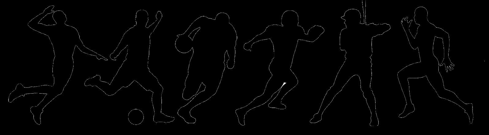 Курс по ставкам на спорт как правильно делать ставки на спортивные события