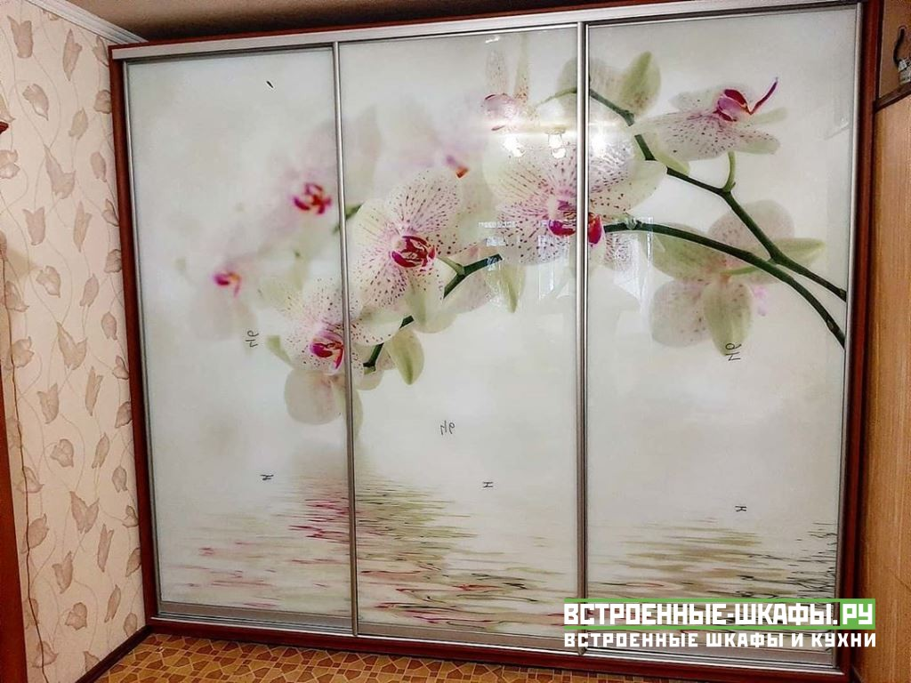 Шкаф купе во всю стену с изображением цветков орхидеи