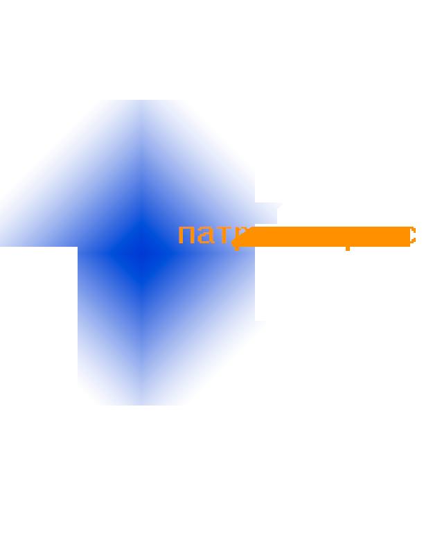Патриот-Сервис