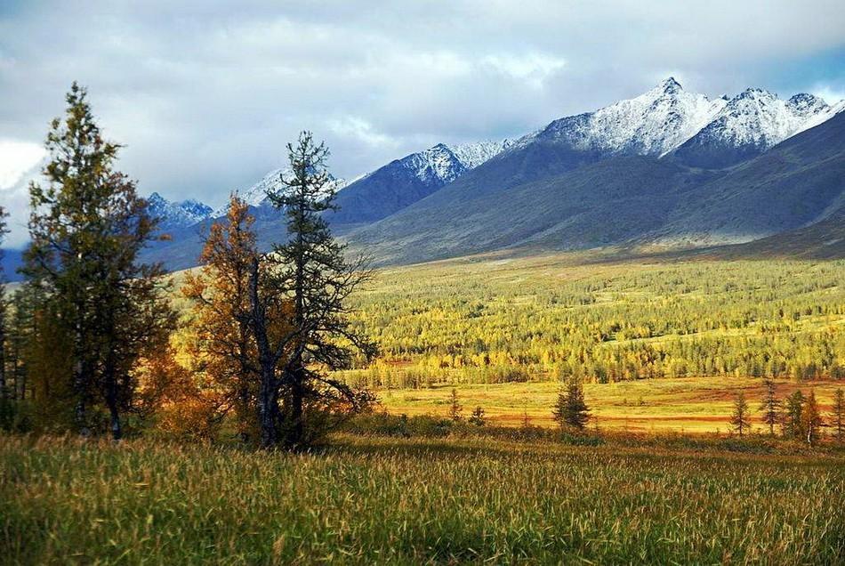 На местности защищенной от ветров Уральскими горами климатические условия мягче, нежели на равнинах с резко-континентальным климатом