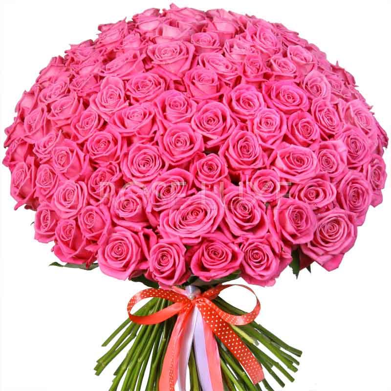 Фото цветов огромных букетов