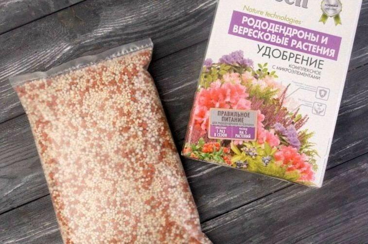 Для подкормки саженцев подходят готовые комплексные удобрения для вересковых культур и рододендронов