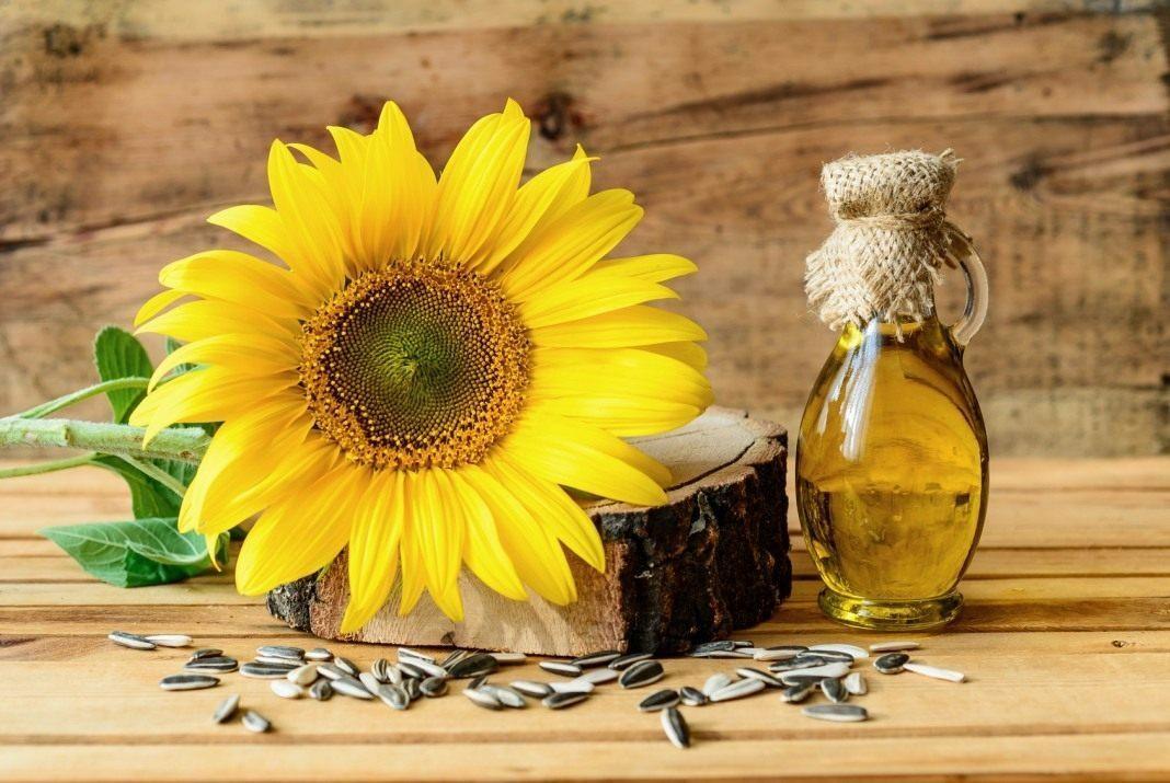 Великий попит на соняшникову культуру і похідні продукти
