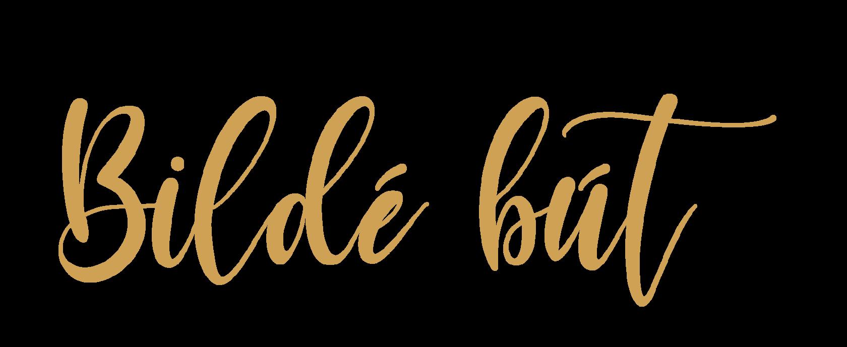 Bilde but logo