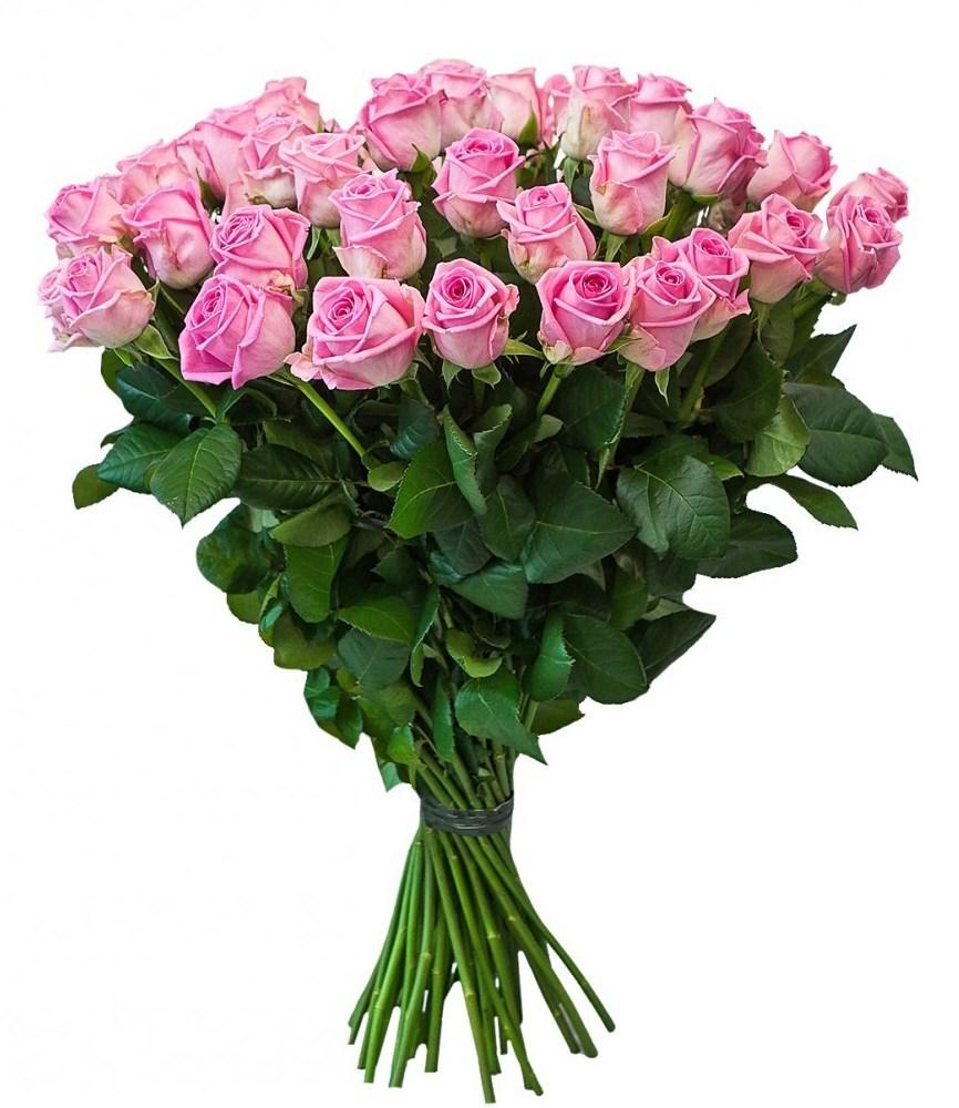 Купить розы в москве недорого новостройка