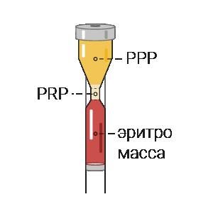 Получена prp-масса