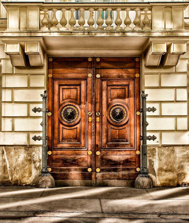 Деревянная дверь со львами в городе Вена, Австрия