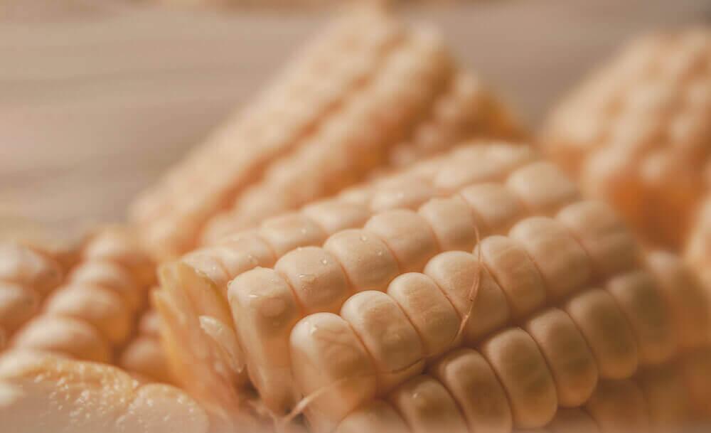Элеваторы цена кукурузы григорьев а м винтовые конвейеры скачать