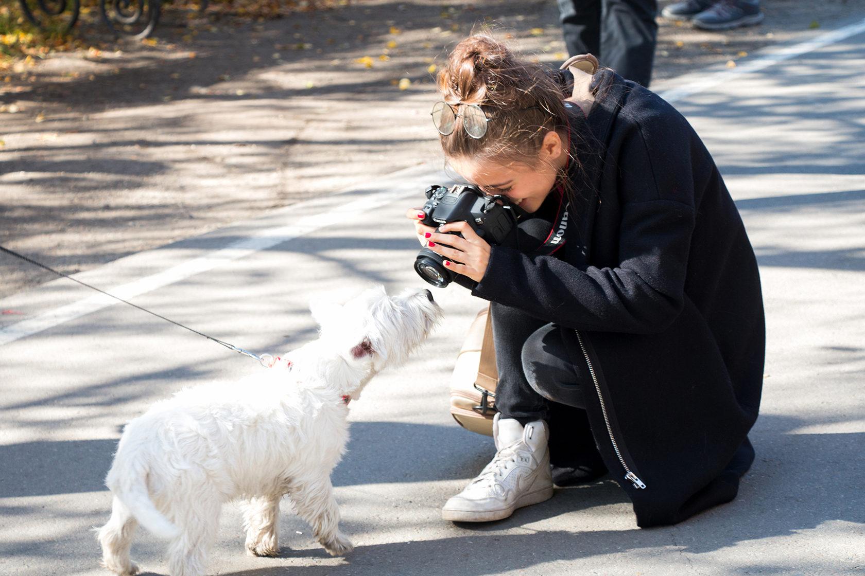 фото курсы фотографа для начинающих в москве недорого основном таким вещичкам