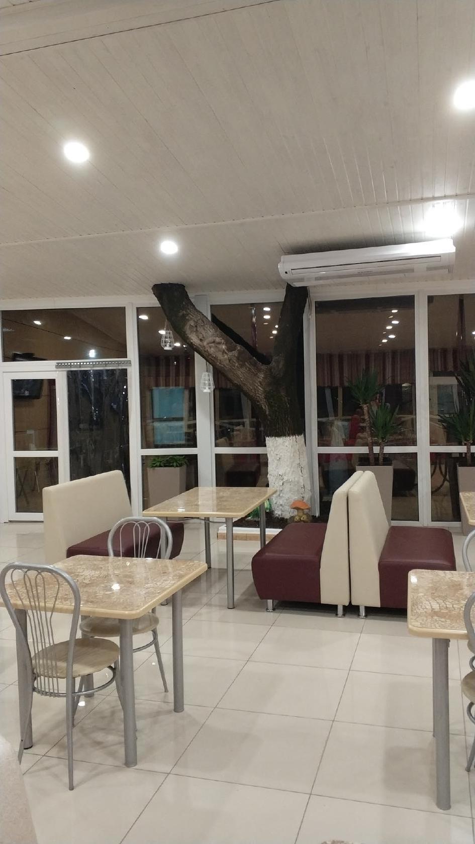 Столовая №1 в Лермонтово - описание, цены и отзывы гостей