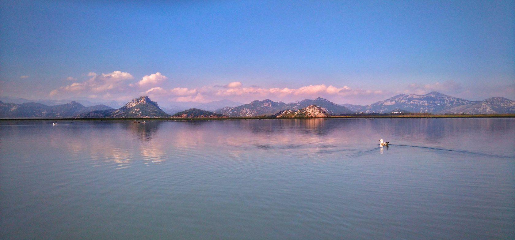 фото скадарское озеро, черногория, озеро