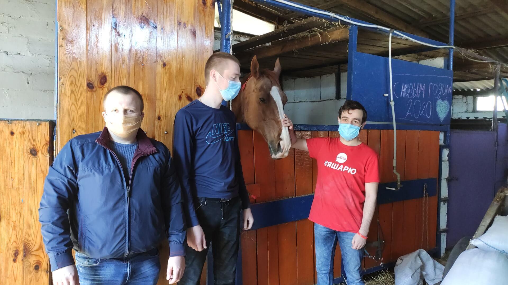 Партия Шария привезла корм для лошадей в период карантина.