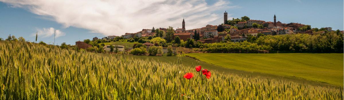 Изображение - Срочная виза во францию __1