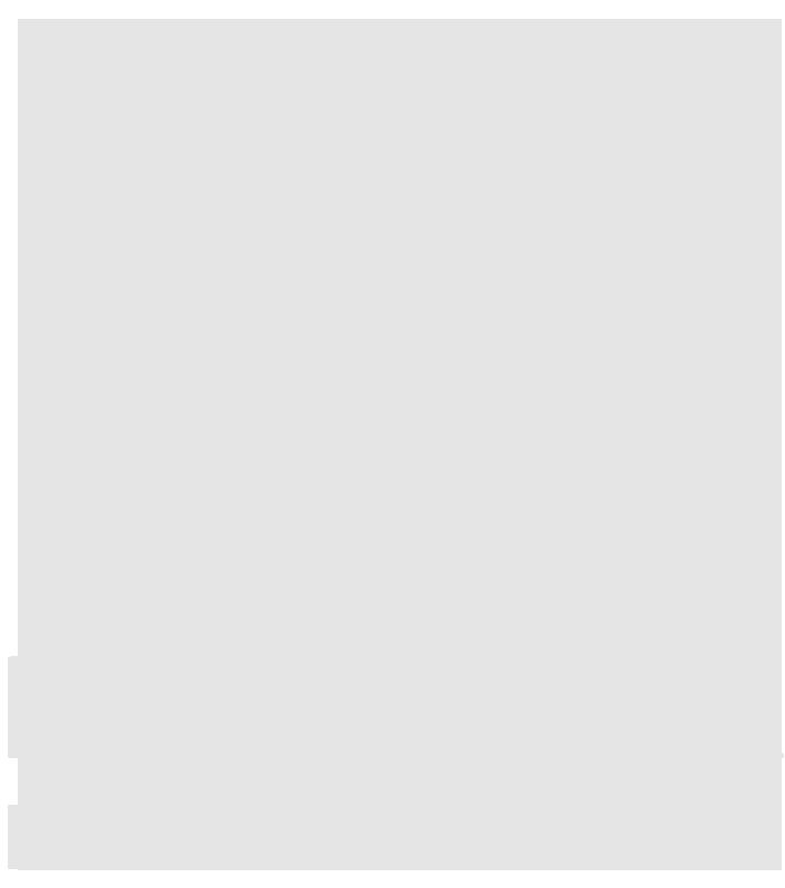 M'Andryk International School