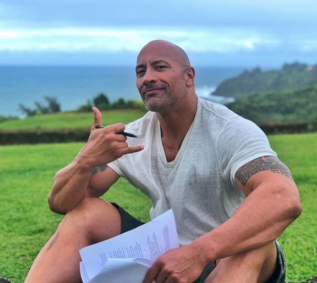 "Dwayne ""The Rock"" Johnson: 108 million followers"