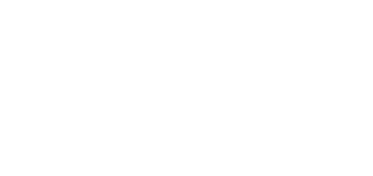 ЛЕВ ЧИТКОВ