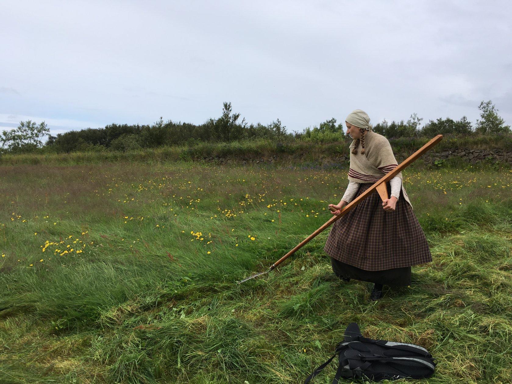 Органическое земледелие, пермакультура: Сенокос в Исландии – дань традициям