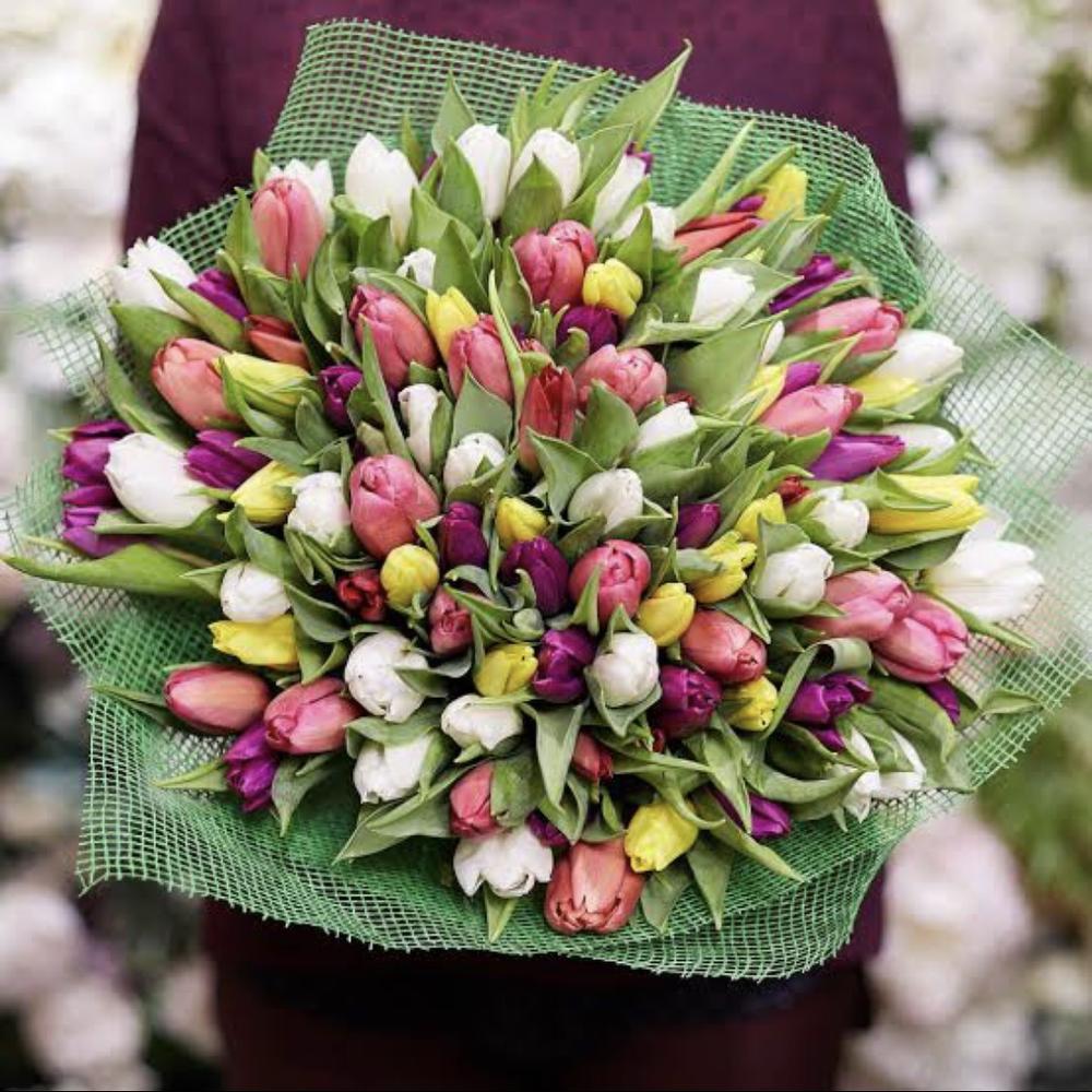 стать вашим шикарные букеты из живых тюльпанов фото разве можно