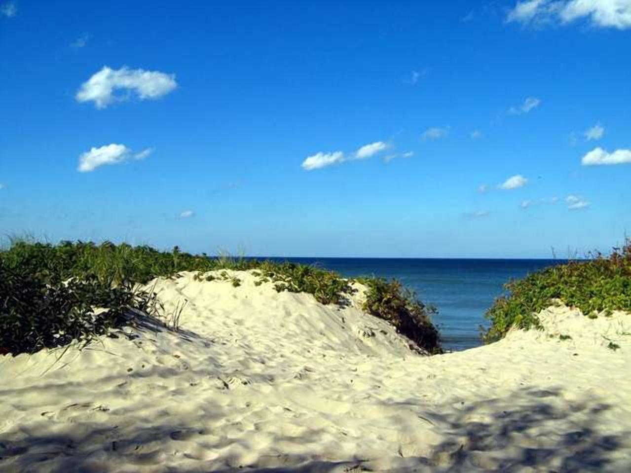 Зеленоградский пляж