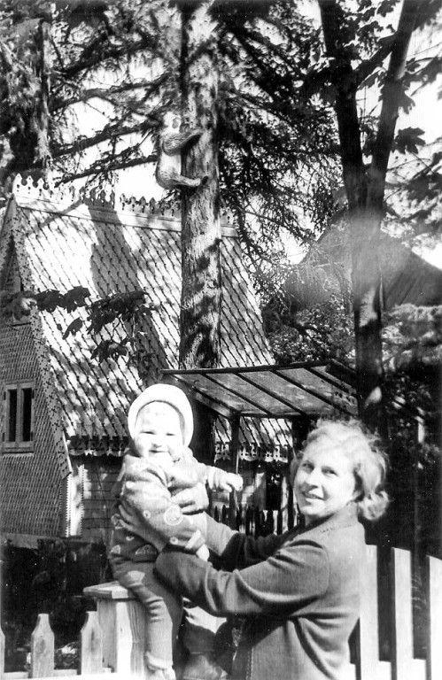 Кукольный домик в Дубровицах. Обхект культурного наследия. Полностью уничтожен