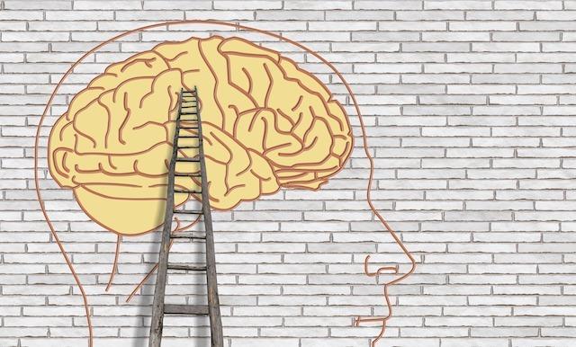как работает психолог, психолог, программа психолога,