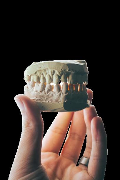 Услуги и цены на стоматологию во Владимире